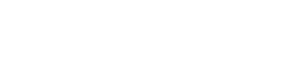logo rapax